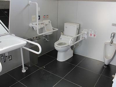 Outdoor toilet (festival open space)