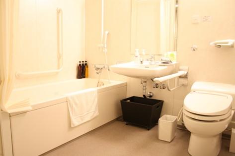 Wheelchair Accessible Bathroom