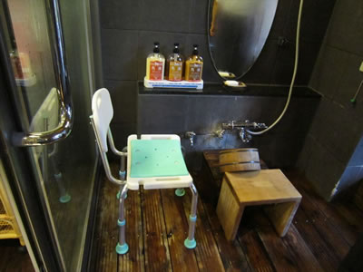 Shower Chair Rental